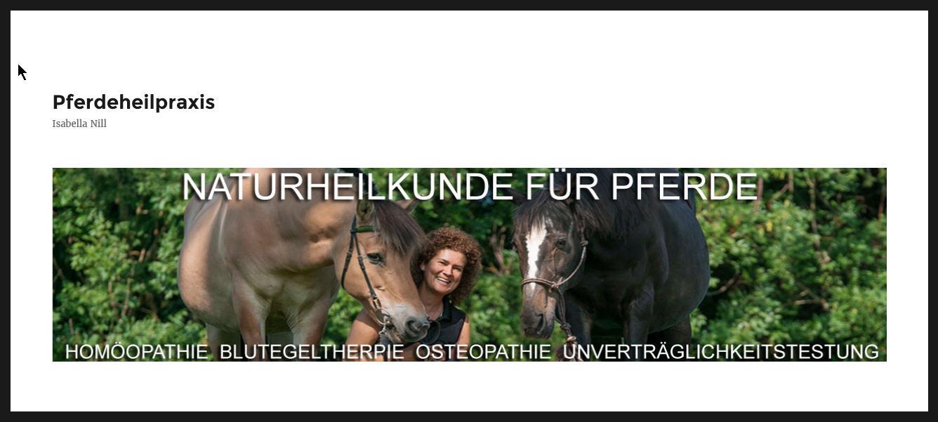 Tierheilpraktikerin für Pferde Paxis Nill